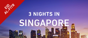 Singapore holiday packages - June vacations